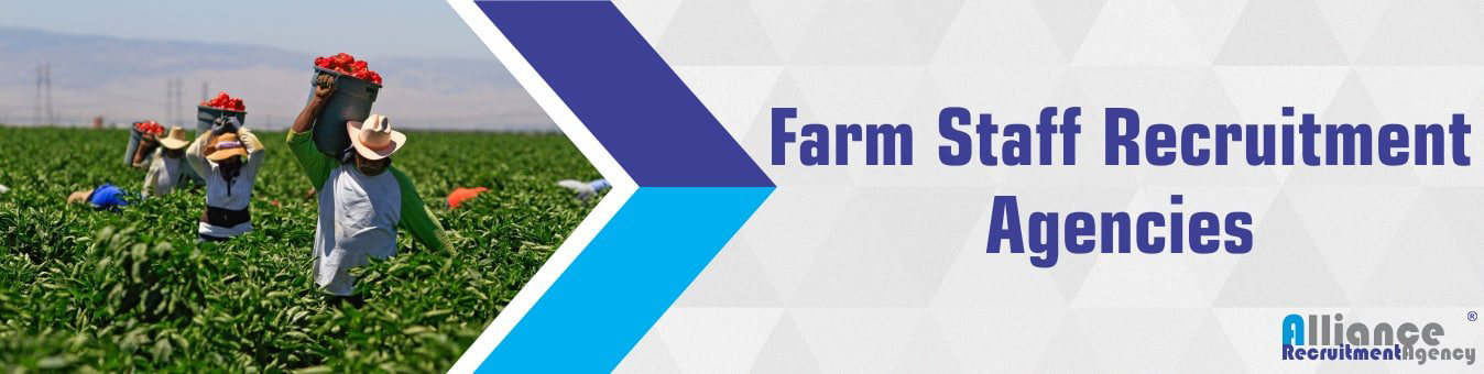 Farm Staff Recruitment Agencies